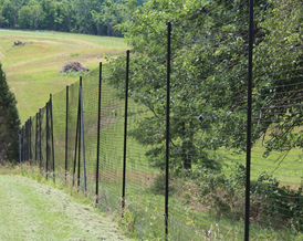 News Tagged Quot Ideal Height Of Deer Fence Quot Deerbusters Canada